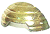 Hollow Metal Sole Gold.jpg